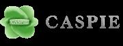 Nuova convenzione in forma diretta con Caspie
